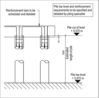 LOD 4 2D Detail representation of In situ concrete augered piling system.
